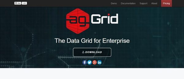JavaScript data grid libraries